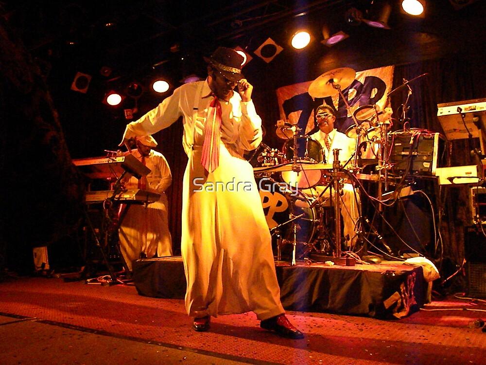 ZAPP Band Crazy Pants by Sandra Gray