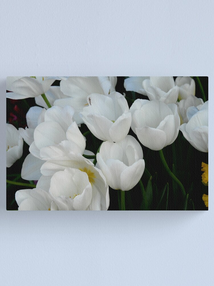 Alternate view of White Tulips Canvas Print