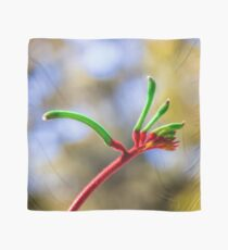 Red and Green Kangaroo Paw Clothing, Kings Park Scarf