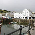 Mevagissey Harbour by kalaryder