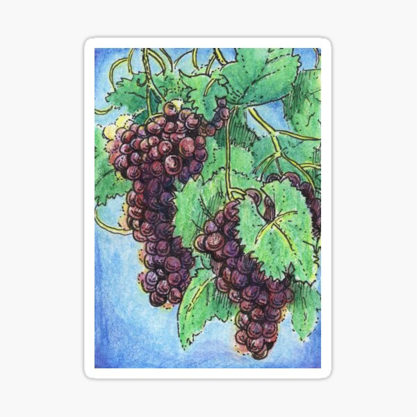 Mixed Media Art Red Purple Grapes on Vine Sticker