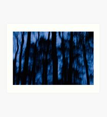 See into the trees Art Print