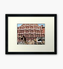 Hawa Mahal, Jaipur landmark, Rajesthan, India Framed Print