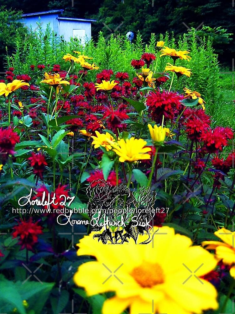 sweet summer surprise by LoreLeft27