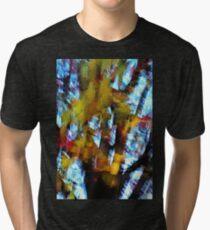 Autumn Series Two Tri-blend T-Shirt