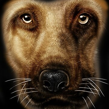 german shepherd Head by LeoZitro