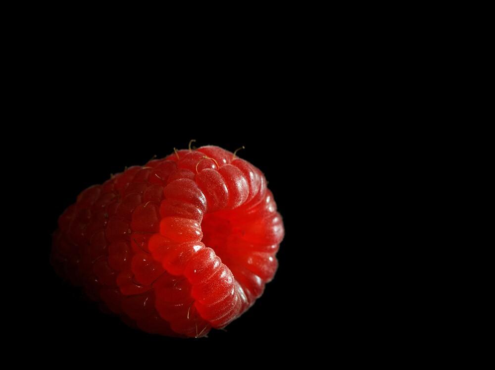 Rasberry by Paulie-W
