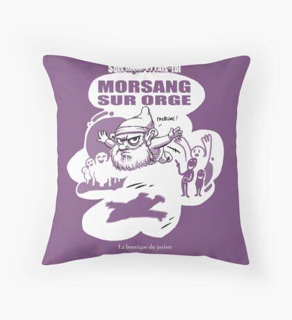 Morsang sur Orge Coussin