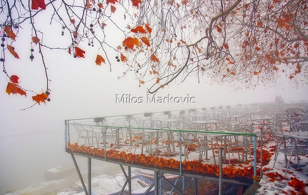 Terrace view by Milos Markovic