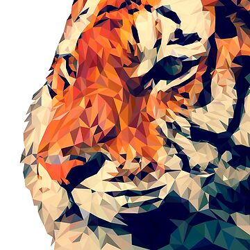A Majestic, Geometric Tiger  by lizzyetc