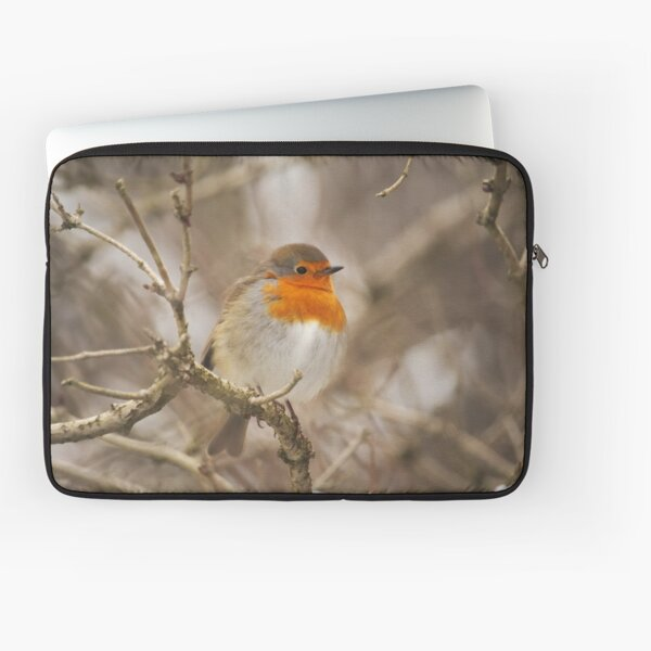 Friendly Neighbourhood Robin Laptop Sleeve