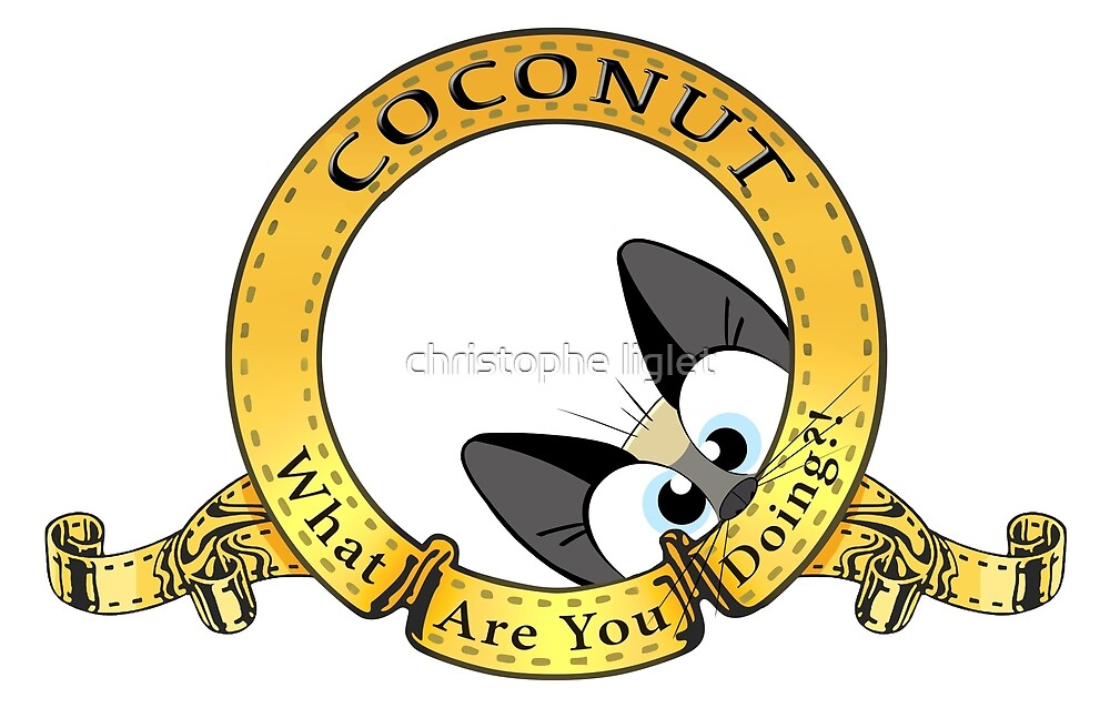 coconut.. what are you doing?! logo by christophe liglet