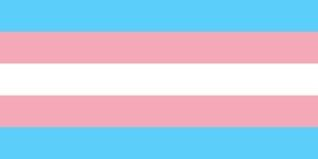 Transgender Pride Flag LGBT by laurabees31