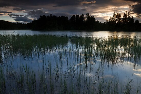 sunset, birsemore loch by codaimages