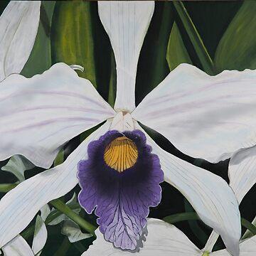 Brazilian Orchid by dbozzetti55