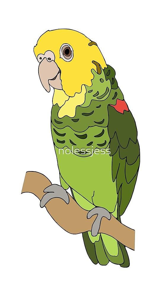 Amazon Parrot by nolessjess