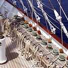 Sailing Is Work In the Wind ! by Nancy Richard