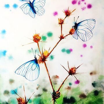 Butterfly by aidesignstudio