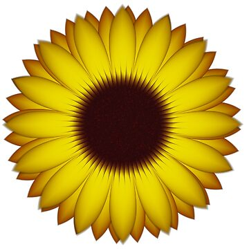 Yellow Sunflower by pinkal