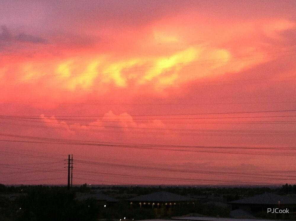 Fiery sky by PJCook
