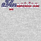 «Rústico Vintage America» de birchandbark