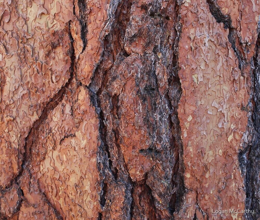 Red and Grey Bark 2 by Logan McCarthy