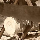 Cutting Wood by William Blair