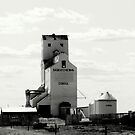Grain Elevator by Ellinor Advincula