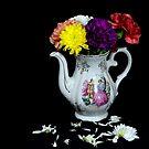 Bouquet de Fleurs by henuly1
