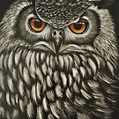 Owl by mbillustrations