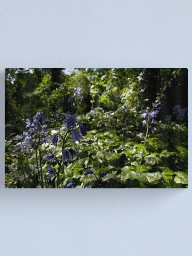 Alternate view of Spanish Bluebells in a Secret Garden Canvas Print