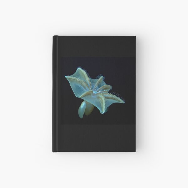 Mysterious Dumbo Octopus Hardcover Journal