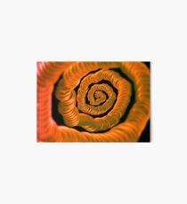 ©NLE  Espiral Art Board