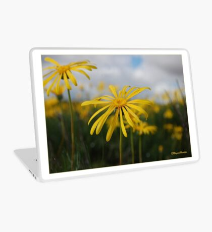 SPRING PLEASURE - Al die veld is vrolik.... Laptop Skin