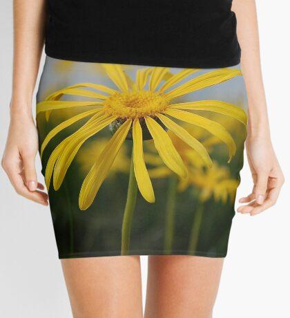 SPRING PLEASURE - Al die veld is vrolik.... Mini Skirt