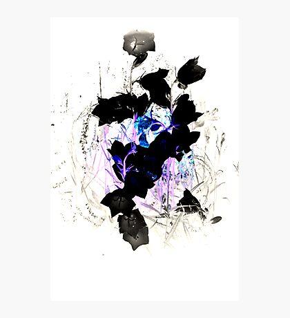 Blue Pink Black Flower Twist Photographic Print