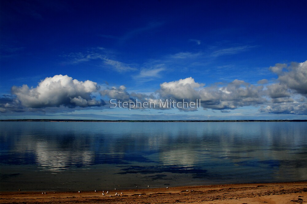 Lines on the Horizon by Stephen Mitchell