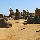 Stone and Sand by kalaryder