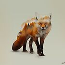 Foxy by redtree