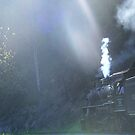 you're riding a train through a dark woods then suddenly everythings sunbeams and light by raindancerwoman