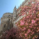 Spring Blossoms at Château d'Amboise by Michael Matthews