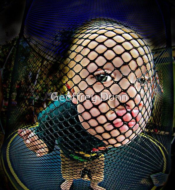 ...the net... by Geoffrey Dunn