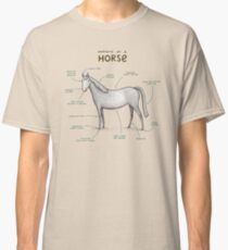 Anatomy of a Horse Classic T-Shirt