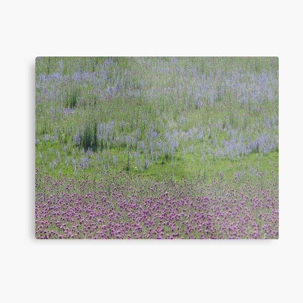 Natures Canvas Metal Print