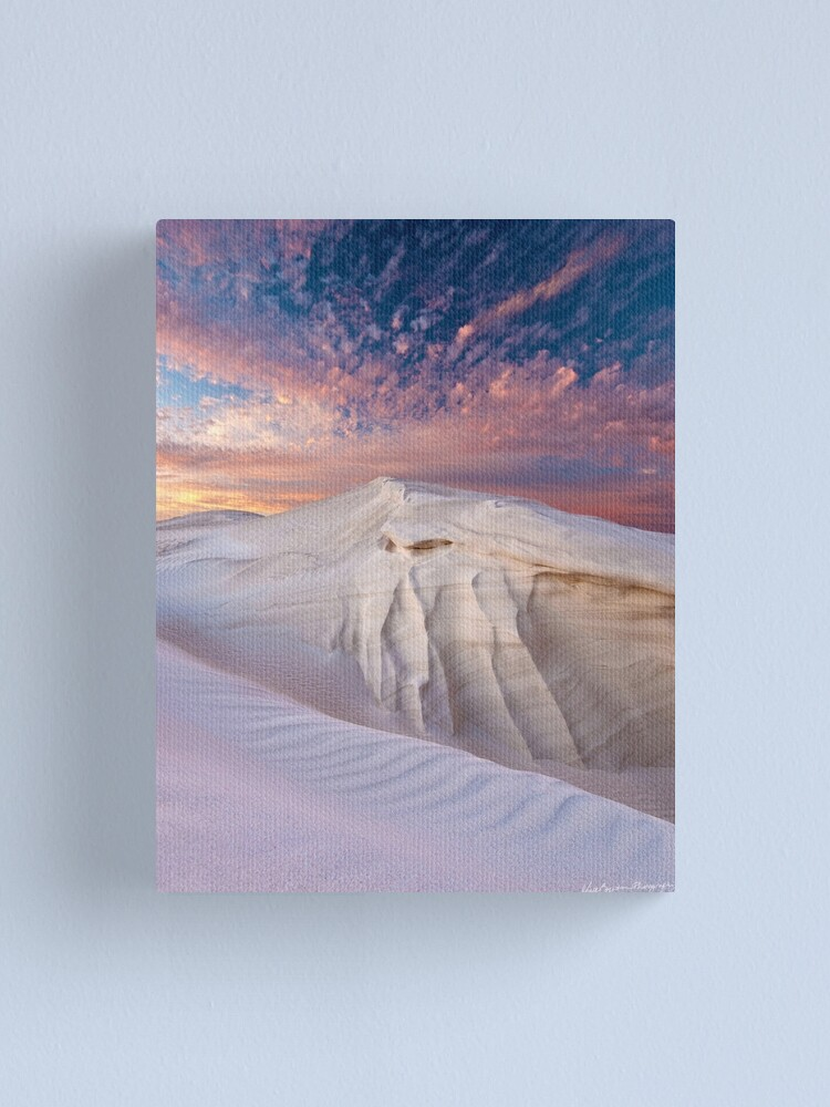 Alternate view of Delicate Canvas Print