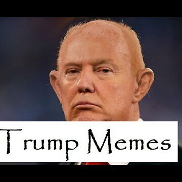 Donald Trump Meme by TheQuoteHouse