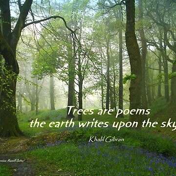 Trees are Poems by Sita