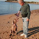 24. Don & his wife's Weimaraner by Cathie Brooker
