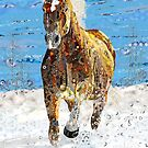 Gift for horse lover and Haflinger palamino equine art fans by Dawn Allen