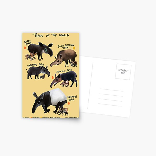 Tapirs of the World Postcard